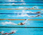 Swim Club Volunteers Management